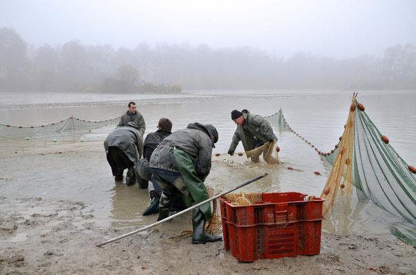 Pêche dans la Dombes 07