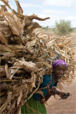 Scènes de vie 110 - Ethiopie