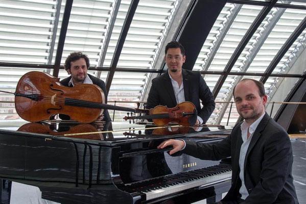Trio Palmer 07