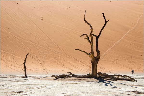 Paysages 83 - Namibie