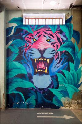 Zoo Art show - 06 - AZED