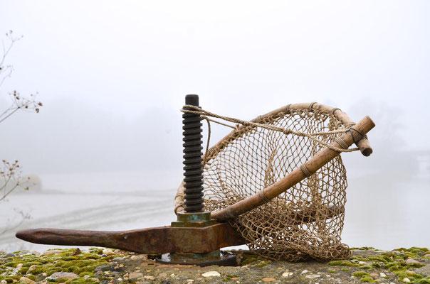 Pêche dans la Dombes 01