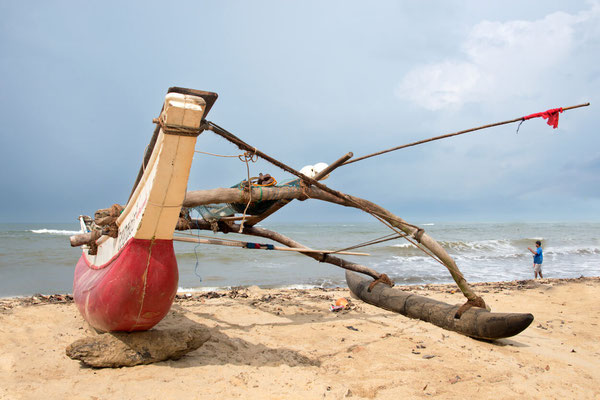 Paysages 46 - Sri Lanka