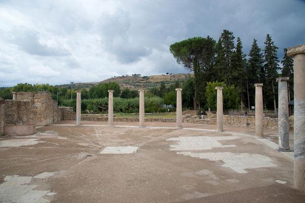 Villa Romana del Casale 21