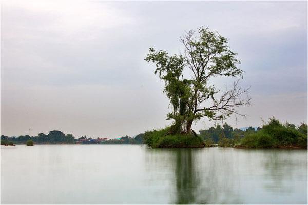 Paysages 121 - Laos