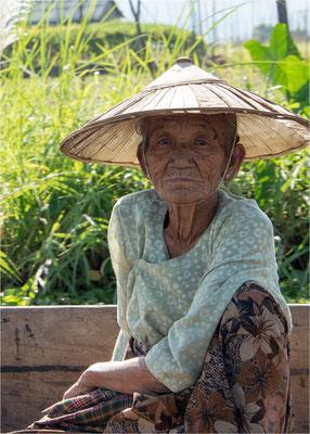 Portraits birmans 41