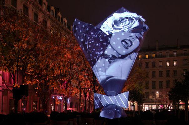 Fête des lumières 2013 - 10