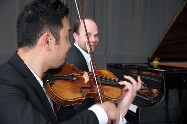 Trio Palmer 11