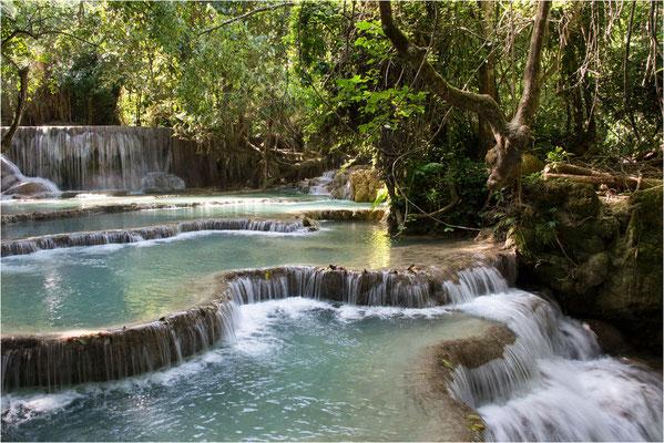Paysages 116 - Laos