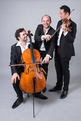 Trio Palmer 03