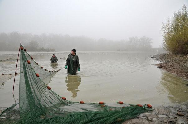 Pêche dans la Dombes 06