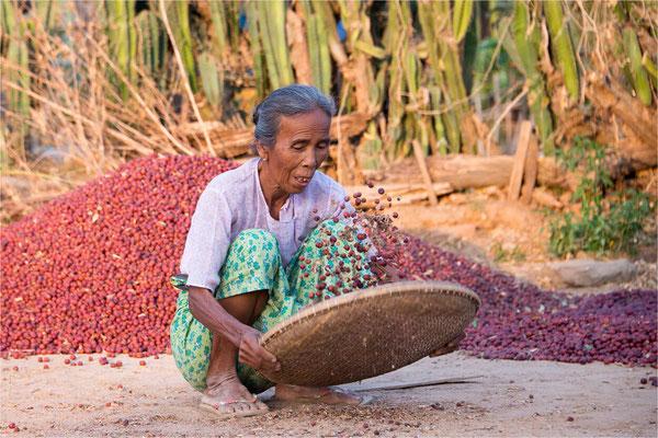 Scènes de vie 54 - Birmanie