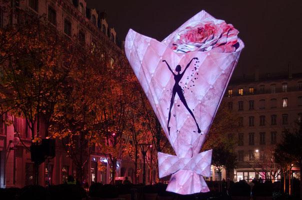 Fête des lumières 2013 - 11