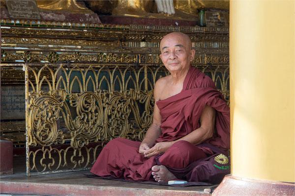 Portraits birmans 16