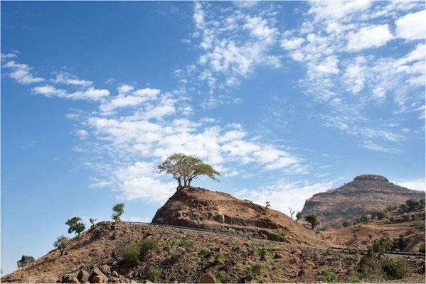 Paysages 104 - Ethiopie