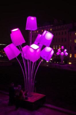 Fête des lumières 2012 - 07