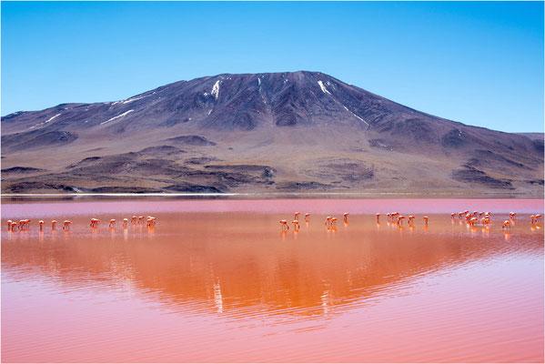 Paysages 97 - Bolivie