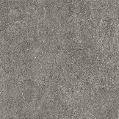Aparici Lithops grey