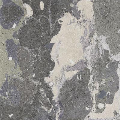Aparici Lithops lipan stamp