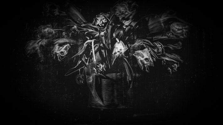 The beauty of decay #1,  60 x 40/90 x 60, empfohlen Aludibond  matt, 1200 Euro, Edition 2/3, 2021