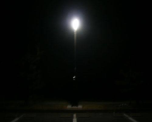 ソーラーLED照明灯(夜)