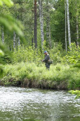 Skogsfast fiske