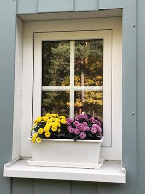Fenster der Vorderfront im Herbst