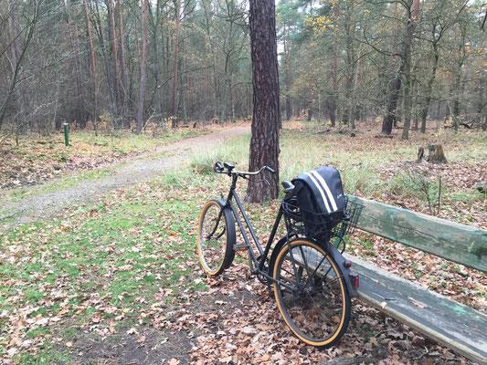 Cache 2 - Eine Bank ... und mein Fahrrad :)