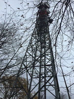 Der Funkturm, der Fernsehen nach Müggelheim bringt