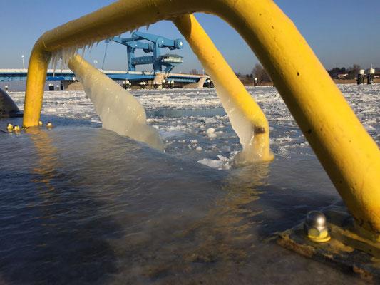 Bei -20 Grad Celsius frieren sogar die Wellen ein