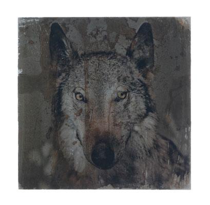 dein Foto auf Rost, Foto auf Metall, Fotokunst aufwendig angefertigte, verarbeitete Fotoarbeit, Tier Motiv Wolf, E116/1