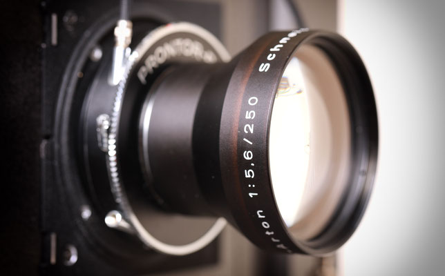 großformat, negativ, planfilm, 13x18, fotolabo, fotograf, fotografie leipzig, analogfotografie