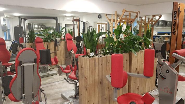 Training Basel in der Physiotherapie Wellsana