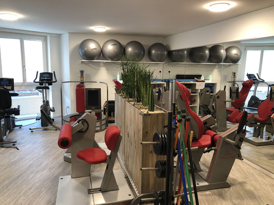 Trainingstherapie Basel, Physiotherapie, Manuelle Therapie, Physiotherapeut