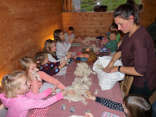 Wolle auseinanderzupfen für die Schafwollkissen
