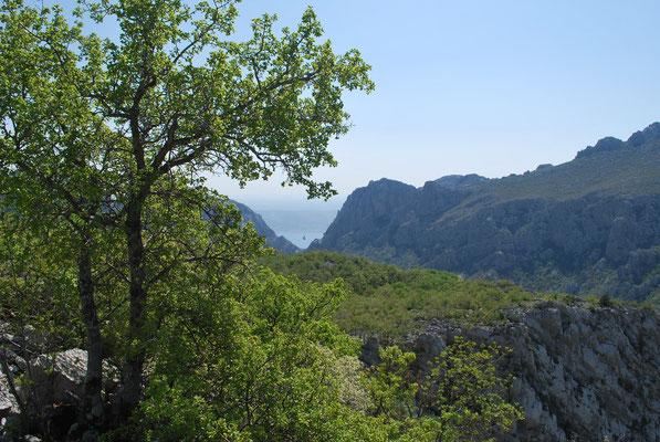 Parc national de Paklenika