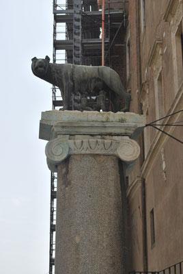 La louve de Rome