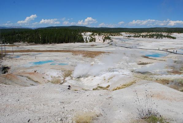 Norris geyser basin tour