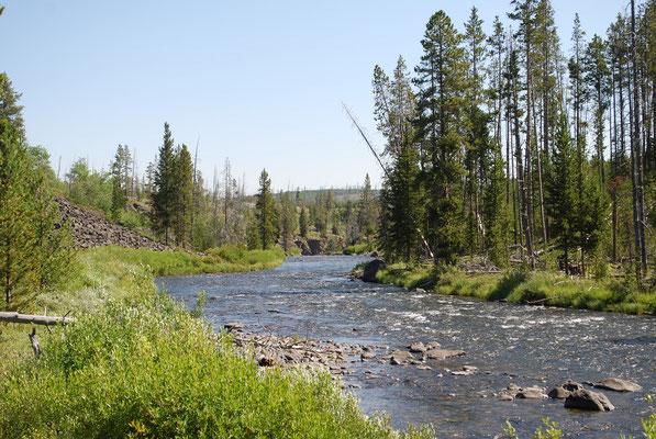 Yellowstone paradis des pêcheurs à la mouche!