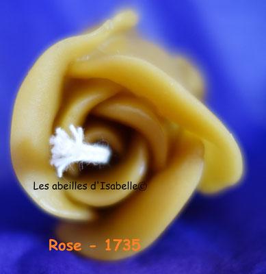 rose - 1735
