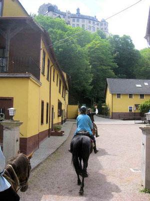 Jens Hammer Wanderreiten Westerwald, Lahn, Taunus