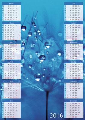 Pflanze blau