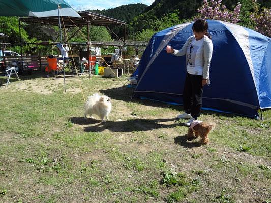 アウトドア・ベース 犬山
