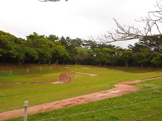 沖縄県民の森キャンプ場