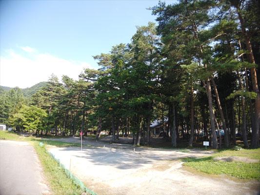白馬グリーンスポーツの森