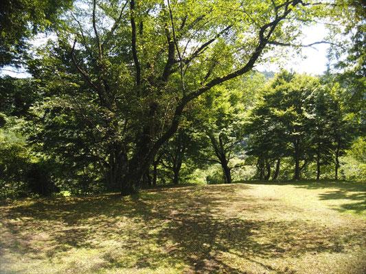 上島キャンプ場