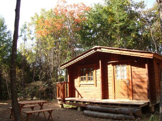 あさまの森オートキャンプ場