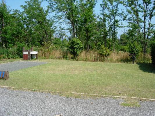 蜂ヶ崎キャンプ場
