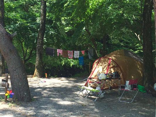 ほうれん坊の森キャンプ場
