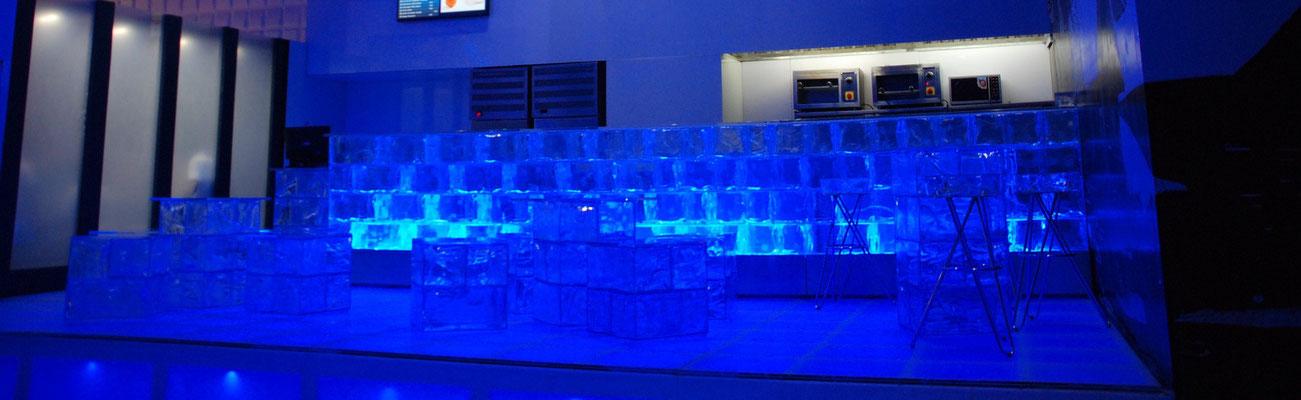 Eisbar Installation aus GEO 282 (Tamil Nadu)